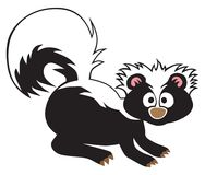 Cartoon Baby Skunk. A cartoon baby skunk has suddenly been startled into alertness and is looking for danger Royalty Free Stock Images