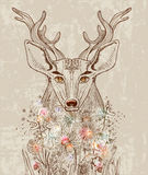Cartoon background with deer and flowers. Hand drawn beautiful illustration Stock Image
