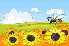 Cartoon background of field with sunflowers. Hand drawn cartoon of summer landscape. Colourful cartoon of summer background. Cartoon of landscape of countryside Stock Images