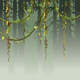 Cartoon background silhouette of the forest with vines Royalty Free Stock Image