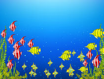 Cartoon background of underwater life. Stock Images