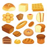 Cartoon bakery products. Toast bread, french roll and breakfast bagel. Whole grain breads, sweet bun and loaf vector. Cartoon bakery products. Toast bread royalty free illustration