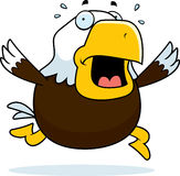 Cartoon Bald Eagle Panic Stock Photo