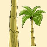 Cartoon banana palm tree without fruit and the tree trunk. Cartoon banana palm tree without fruit and tree trunk stock illustration