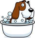 Cartoon Basset Hound Bath Stock Image