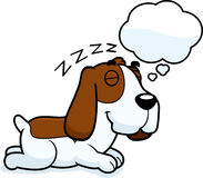 Cartoon Basset Hound Dreaming Stock Photos