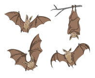 Cartoon bats Royalty Free Stock Photography