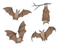 Cartoon bats Royalty Free Stock Photography