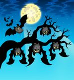 Cartoon bats with full moon Royalty Free Stock Photo