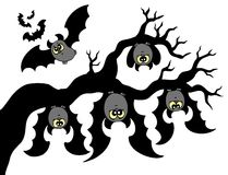 Cartoon bats hanging on branch Royalty Free Stock Photos