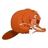 Cartoon baver. Vector image of an cartoon brown Beaver Stock Photo