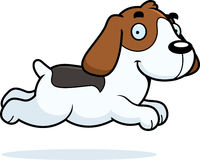 Cartoon Beagle Running Royalty Free Stock Image