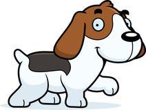 Cartoon Beagle Walking Stock Image
