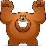 Cartoon Bear Celebrating Stock Photos