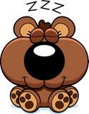 Cartoon Bear Cub Hibernating Stock Photo