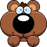 Cartoon Bear Cub Peeking Royalty Free Stock Image