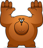 Cartoon Bear Surrender Royalty Free Stock Photos