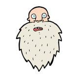 Cartoon bearded man Stock Photo