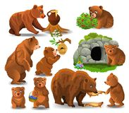 Cartoon bears doing different activities isolated on a white background. Cartoon bears doing different activities and eating their favorite food like honey Royalty Free Stock Image