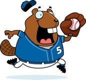 Cartoon Beaver Baseball Royalty Free Stock Image
