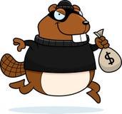 Cartoon Beaver Burglar Stock Images