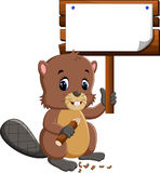 Cartoon beaver. Hanging wooden signboard Stock Photos