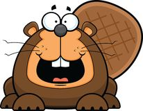 Cartoon Beaver Happy Royalty Free Stock Photography