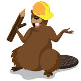 Cartoon beaver in hardhat isolated Royalty Free Stock Photography