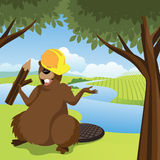 Cartoon beaver in hardhat at the river Royalty Free Stock Images