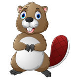 Cartoon beaver Stock Image