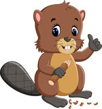 Cartoon beaver Royalty Free Stock Images