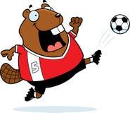 Cartoon Beaver Soccer Kick Royalty Free Stock Photo
