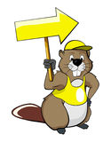 Cartoon beavers with a pointer (arrow) Royalty Free Stock Photos