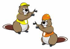 Cartoon beavers two Royalty Free Stock Image
