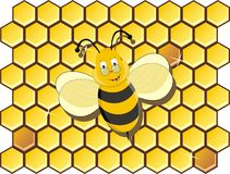 Cartoon bee. And in a background honey Stock Photo