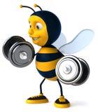 Cartoon bee Royalty Free Stock Photography