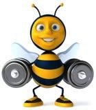 Cartoon bee Stock Image