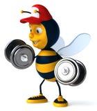 Cartoon bee Royalty Free Stock Photos