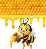 Cartoon bee holding bucket with honeycomb and honey dripping Royalty Free Stock Image