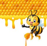 Cartoon bee holding dipper with honeycomb and honey dripping Stock Image