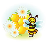 Cartoon bee with honey. Humorous cartoon bee with honey in the comb Royalty Free Stock Images