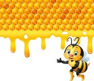 Cartoon bee with honeycomb and honey dripping Stock Photography