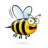 Cartoon Bee. Illustration of a Yell Bee on White Stock Image