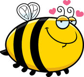 Cartoon Bee in Love Royalty Free Stock Images