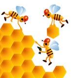 Cartoon bees build honeycombs. Three cartoon bees build honeycomb with honey Royalty Free Stock Photo