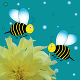 Cartoon bees with yellow  flower Royalty Free Stock Photography