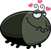 Cartoon Beetle in Love Royalty Free Stock Photo