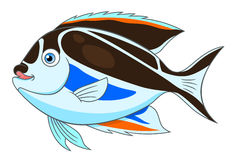 Cartoon bellus angelfish Royalty Free Stock Photo