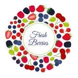 Cartoon berries menu. Raspberry, blackberry, gooseberry, red currant, black currant Stock Photo