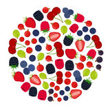Cartoon berries menu. Raspberry, blackberry, gooseberry, red currant, black currant Royalty Free Stock Photos
